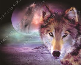 """Diamond painting """"Wolve with moon"""""""
