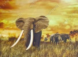 "Diamond Painting ""Elephants"""