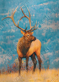 "Diamond painting ""Red deer"""
