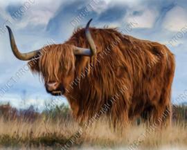 "Diamond painting ""Scottish Highlander"""
