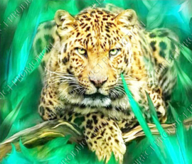 "Diamond painting ""Leopard"""
