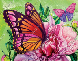 "Diamond painting ""Butterflies"""