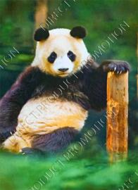 """Diamond painting """"Panda"""""""