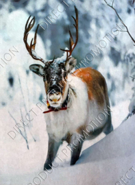 "Diamond painting ""Reindeer in the snow"""