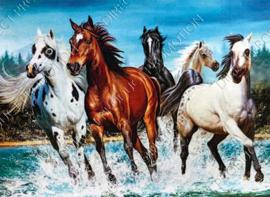 "Diamond painting ""Herd of horses"""