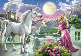 "Diamond painting ""Princess with unicorns"""