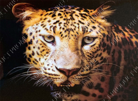 "Diamond painting ""Leopard Head"""