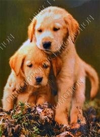 """Diamond painting """"Labrador retriever puppies"""""""