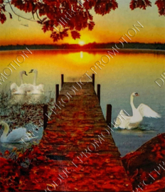"Diamond painting ""Swans in lake"""