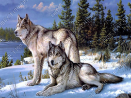 "Diamond painting ""Two wolves"""