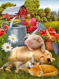 "Diamond painting ""Pig, dog and kittens"""
