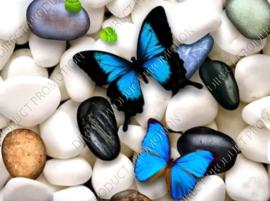 "Diamond painting ""Blue butterflies"""
