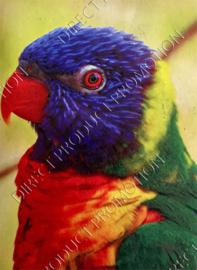 """Diamond painting """"Lori parrot"""""""
