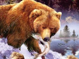 """Diamond painting """"Brown bear"""""""