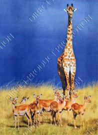 "Diamond painting ""Giraffe among antelopes"""