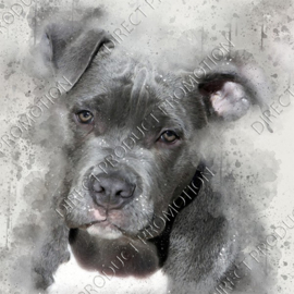 "Diamond painting ""Pittbull"""