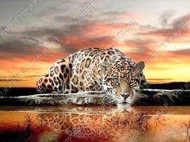 "Diamond painting ""Drinking leopard"""