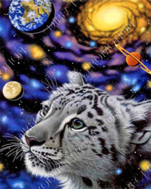 "Diamond painting ""Cub in space"""