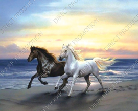 "Diamond painting ""Two horses on the beach"""