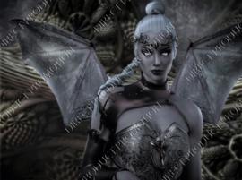 "Diamond painting ""Warrior elf"""