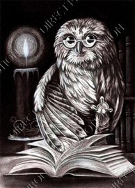 "Diamond painting ""Reading owl"""