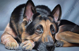 "Diamond painting ""German shepherd"""