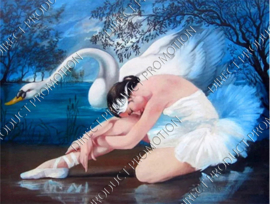 "Diamond painting ""Swan Lake"""
