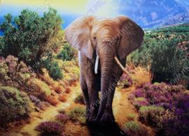 "Diamond painting ""Elephant"""