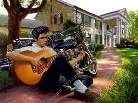 "Diamond painting ""Elvis at his house"""