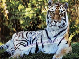 """Diamond painting """"Lying tiger"""""""