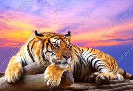 "Diamond painting ""Tiger at sunset"""