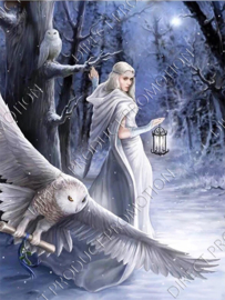 "Diamond painting ""Snowy owl woman"""