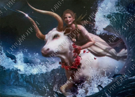 "Diamond painting ""Girl and bull"""