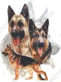 """Diamond painting """"German shepherds"""""""