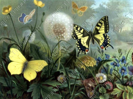 "Diamond painting ""Flower field and butterflies"""