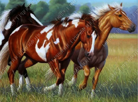"Diamond painting ""Paint horses"""