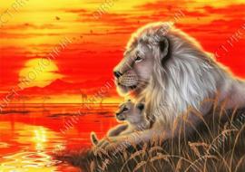 """Diamond painting """"Lions"""""""