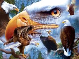 """Diamond painting """"Sea eagles"""""""