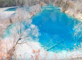 "Diamond painting ""Snow landscape"""