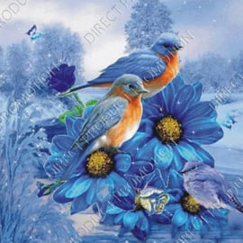 "Diamond painting ""Birds"""