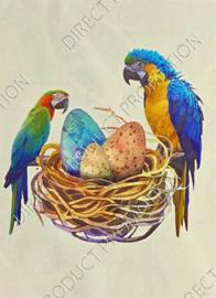 "Diamond Painting ""Parrots"""
