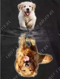 "Diamond painting ""Golden retriever"""