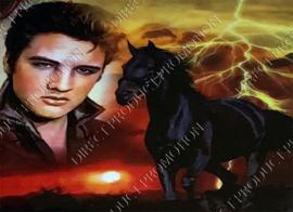 "Diamond painting ""Elvis and horse"""