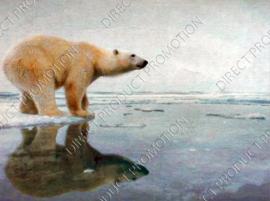 "Diamond painting ""Polar bear on ice"""