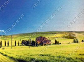 "Diamond painting ""Farm in pasture"""