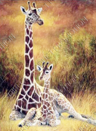 "Diamond painting ""Giraffes"""