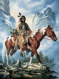 "Diamond painting ""Indian on horse"""