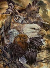 """Diamond painting """"Birds of prey"""""""