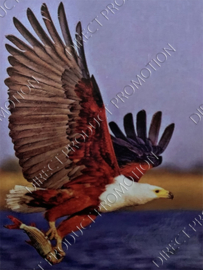 "Diamond painting ""Bald eagle"""