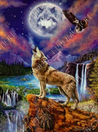 """Diamond painting """"Wolf and bald eagle"""""""
